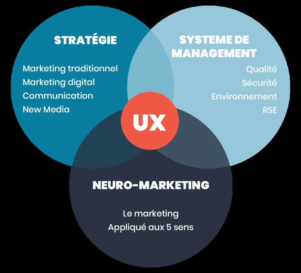 Minds Up - Services UX