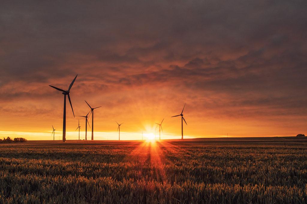 QSE-RSE Gestion du coût environnemental